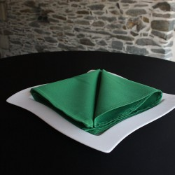 Serviette de table 100% polyester verte, Anne-C