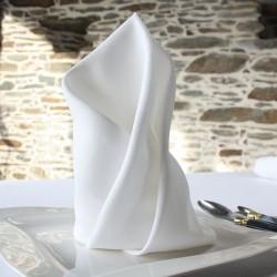 Pour votre linge de table professionnel, la gamme polyester avec la serviette polyester blanche, en 40 x 40 cm ou 50 x 50 cm.